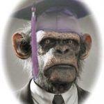 college-ape1