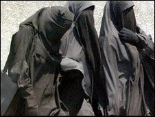 The niqab has become increasingly popular among Egypt's Muslim radicals